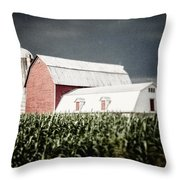Before The Storm Throw Pillow by Lisa Russo