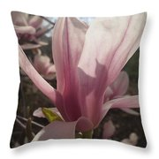 Before The Winds Blow Throw Pillow