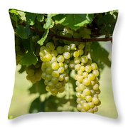 Before The Wine Throw Pillow