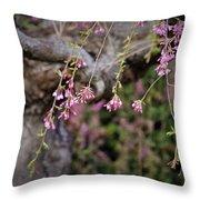 Beginning Of Bloomination Throw Pillow