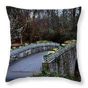 Beginning Of Spring Bridge Throw Pillow