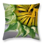 Beginning To Bloom Throw Pillow