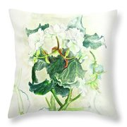 Begonia Ballet Throw Pillow