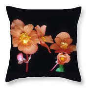 Begonia Buddies Throw Pillow