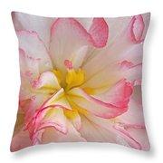 Begonia Pink Frills - Horizontal Throw Pillow