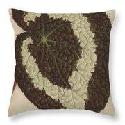 Begonia Rex Throw Pillow