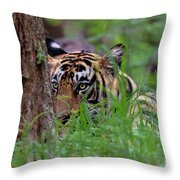Behind A Tree Throw Pillow