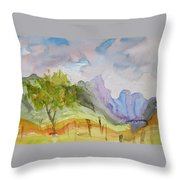 Behind Overland Sheepskin Throw Pillow