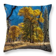 Behind The Branches Throw Pillow