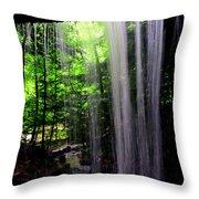 Behind The Falls Throw Pillow
