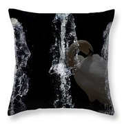 Behind The Fountain Throw Pillow