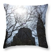 Behind The Trees 1 Throw Pillow