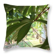 Behind The Wall Throw Pillow