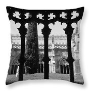 Behind Yhe Shadow Throw Pillow