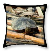 Behold The Turtle Throw Pillow
