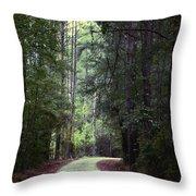 Beidler Forest Throw Pillow