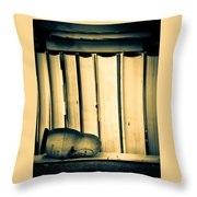 Being John Malkovich Throw Pillow by Bob Orsillo