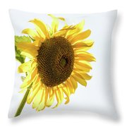 Being Neighborly -  Throw Pillow