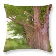 Being Old Trees Throw Pillow