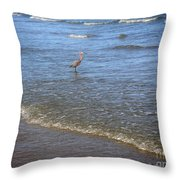 Being One With The Gulf - Detached Throw Pillow