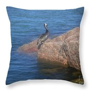 Being One With The Gulf - Ignoring Throw Pillow