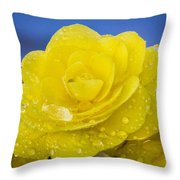 Bejeweled Begonia Throw Pillow