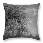 Bejeweled Vii Throw Pillow