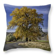 Belfry Fall Landscape 5 Throw Pillow