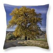 Belfry Fall Landscape 5 Throw Pillow