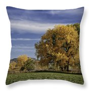Belfry Fall Landscape 7 Throw Pillow by Roger Snyder