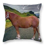 Belgian Horse Throw Pillow