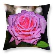 Belinda's Dream Rose 004 Throw Pillow