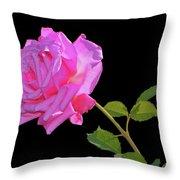 Belinda's Dream Rose 005 Throw Pillow