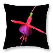 Bell Flower Blossom Throw Pillow