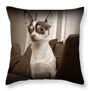 Bella Dulce Throw Pillow