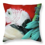 belle Ara Macao oiseaux tropicaux de Maui  Throw Pillow