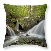 Below Apple Orchard Falls Throw Pillow