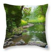Below Drift Creek Falls Throw Pillow