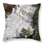 Below The Dam Throw Pillow
