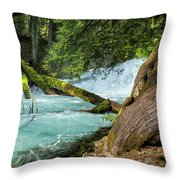 Below The Falls Throw Pillow