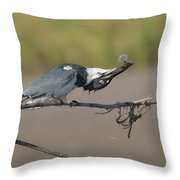 Belted Fish Throw Pillow