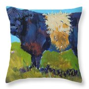 Belted Galloway Cow - The Blue Beltie Throw Pillow