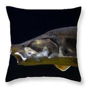 Beluga Sturgeon No 1 Throw Pillow