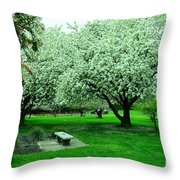 Bench Among.the Blossoms Throw Pillow