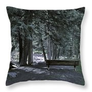 Bench By The Stream II Throw Pillow