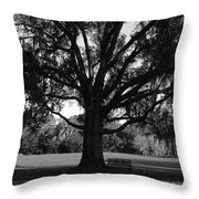 Bench Under Oak Throw Pillow
