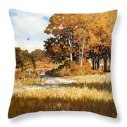 Bend In The Road Throw Pillow
