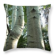 Bend In Time Throw Pillow