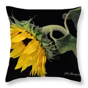 Bending Sunflower Throw Pillow