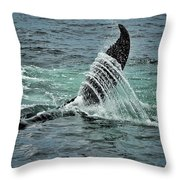 Bending The Water Throw Pillow